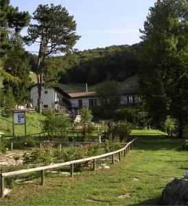 orto-botanico-monte-baldo-274x300