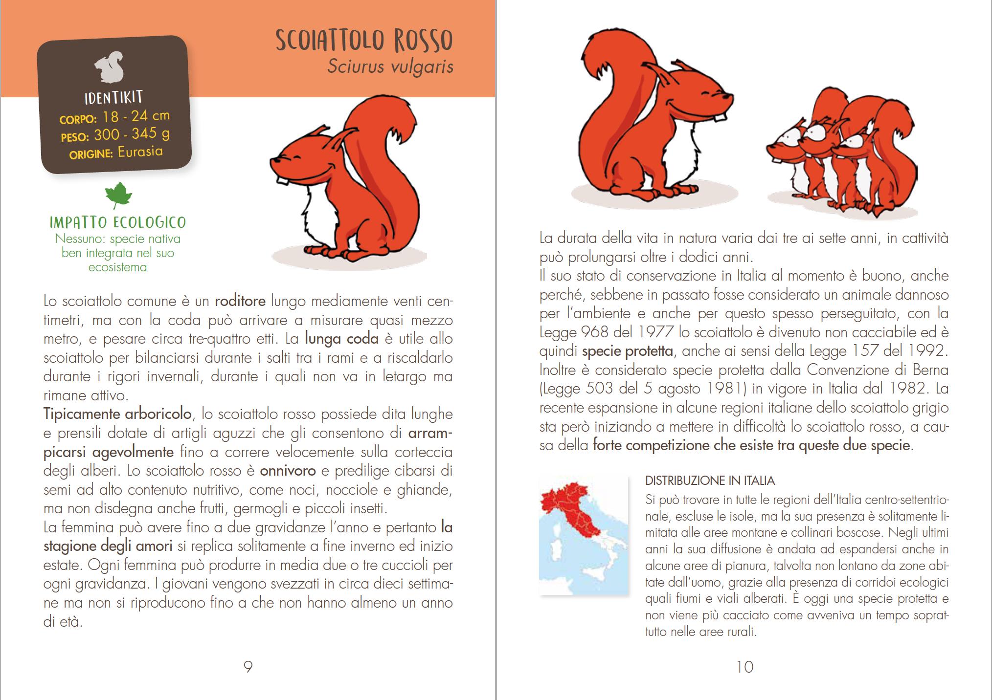 scoiattoli italiani biodiversità wba conservazione
