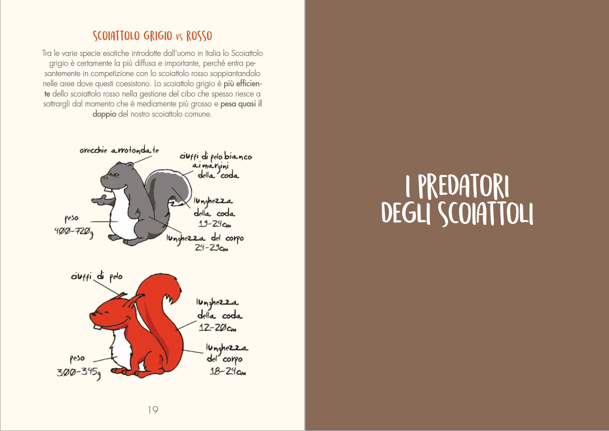 scoiattoli italiano biodiversità wba conservazione invasivi